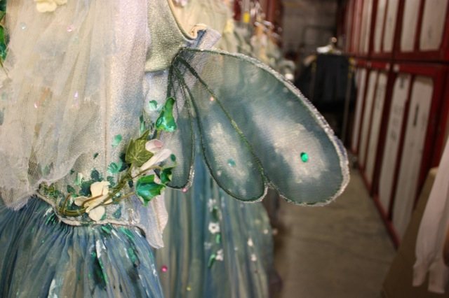 Faeries Royal Opera House. Dream Fairies Fairie Wings